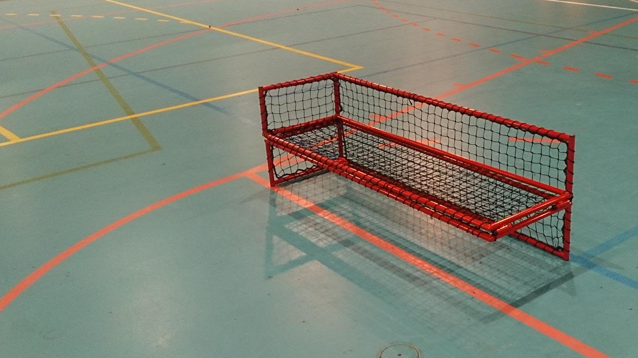 wheelchair floorball goal